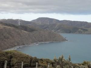 10-03-22-31紐西蘭(出差) (413)