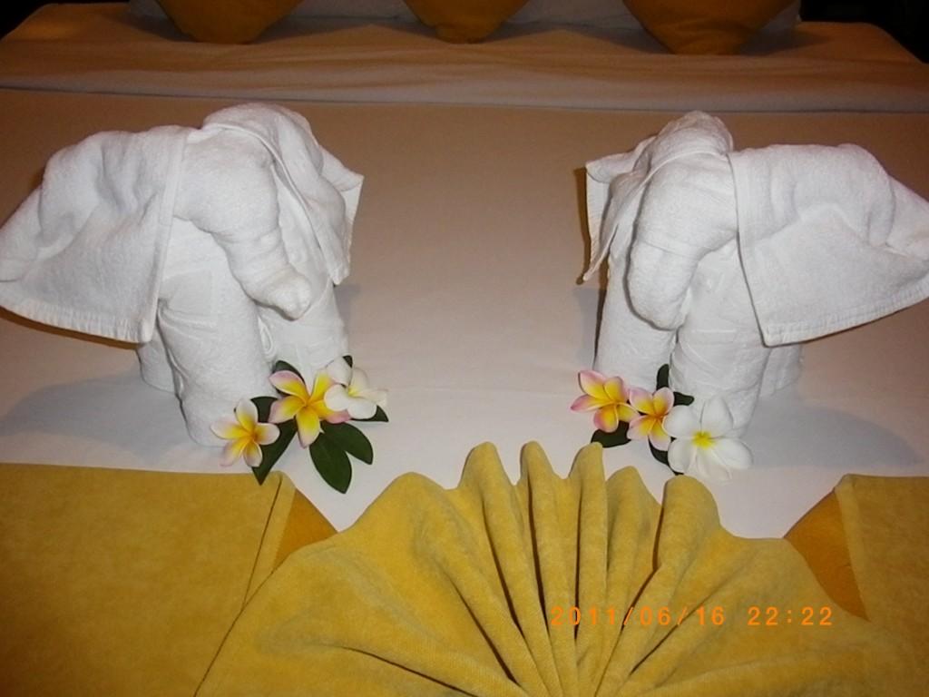 注意大象的鼻子不同,左雄右雌,母象的耳朵其實別有一朵雞蛋花