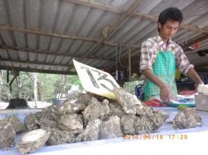 販售生蠔市場攤位,泰銖13元一顆,因氣候減量價格墊高,今年初才賣8元