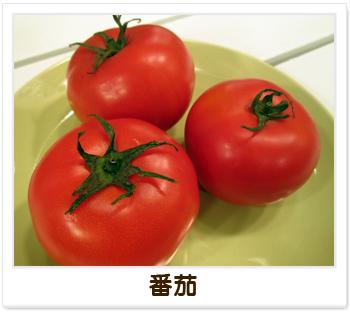 健康小叮嚀-番茄