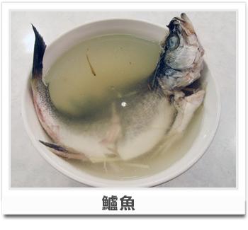 健康小叮嚀-鱸魚