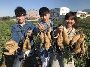 圖/陳柏宇、溫瀚龍、菜子大豐收