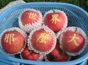 世界那麼大蘋果