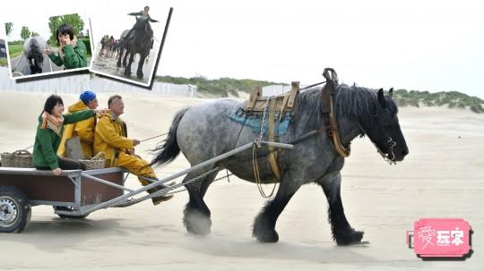 04海邊騎馬補蝦